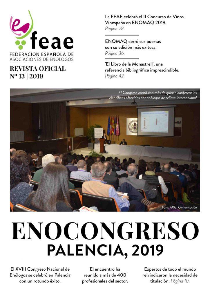Revista FEAE - Número 13