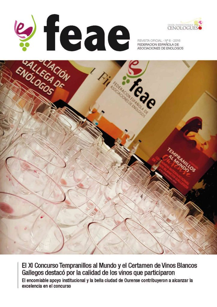 Revista FEAE - Número 06